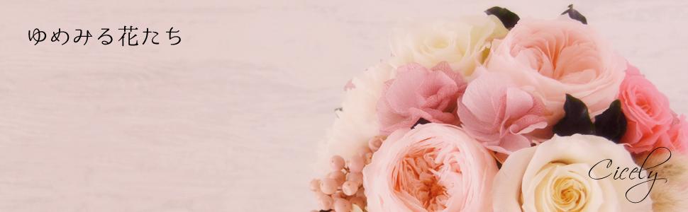 Cicely ゆめみる花たち